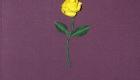 lila vászon